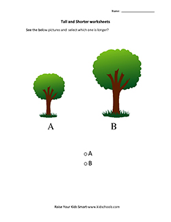 UKG-Tall and Short Worksheets – Tree -