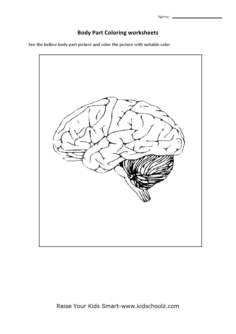 Sheep Brain Coloring Pages