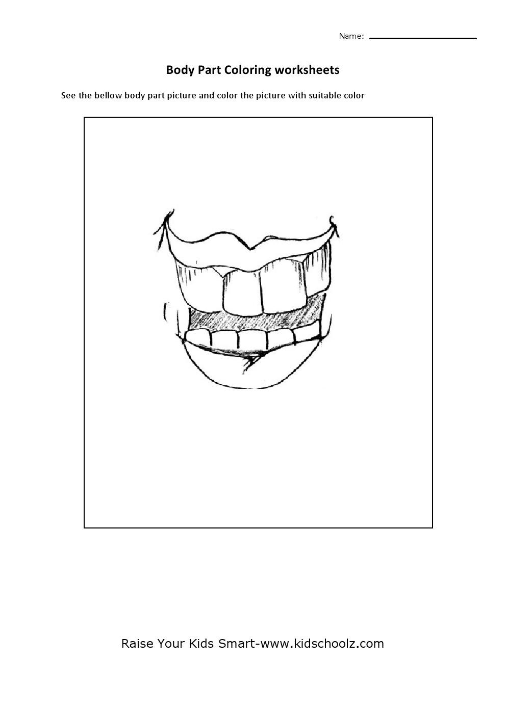 human body parts colouring worksheets teeth kidschoolz. Black Bedroom Furniture Sets. Home Design Ideas