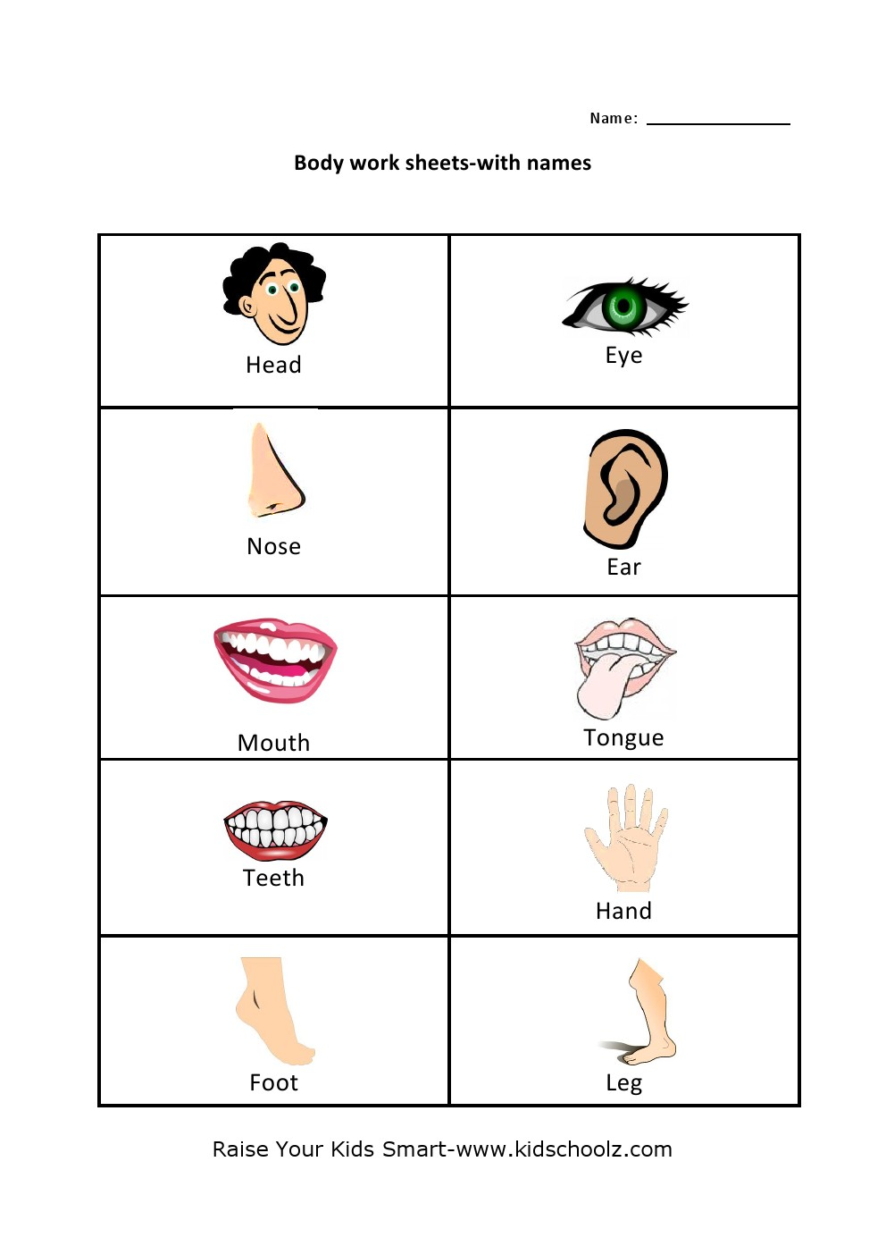Human Body Parts Identification Worksheets