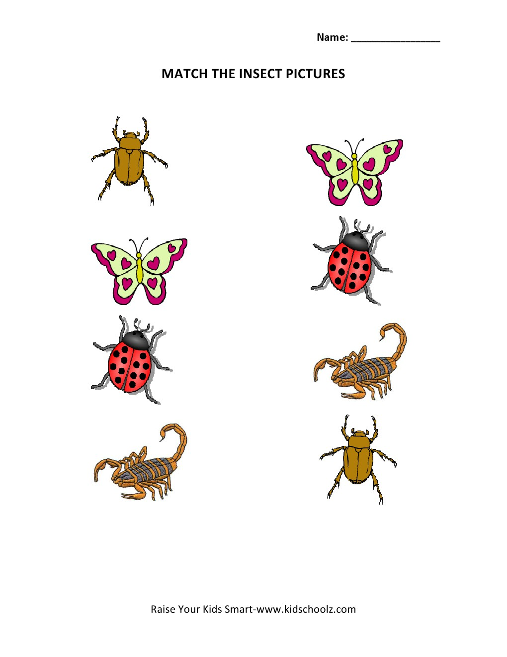 math worksheet : insect worksheets for kindergarten : Insects Worksheets For Kindergarten