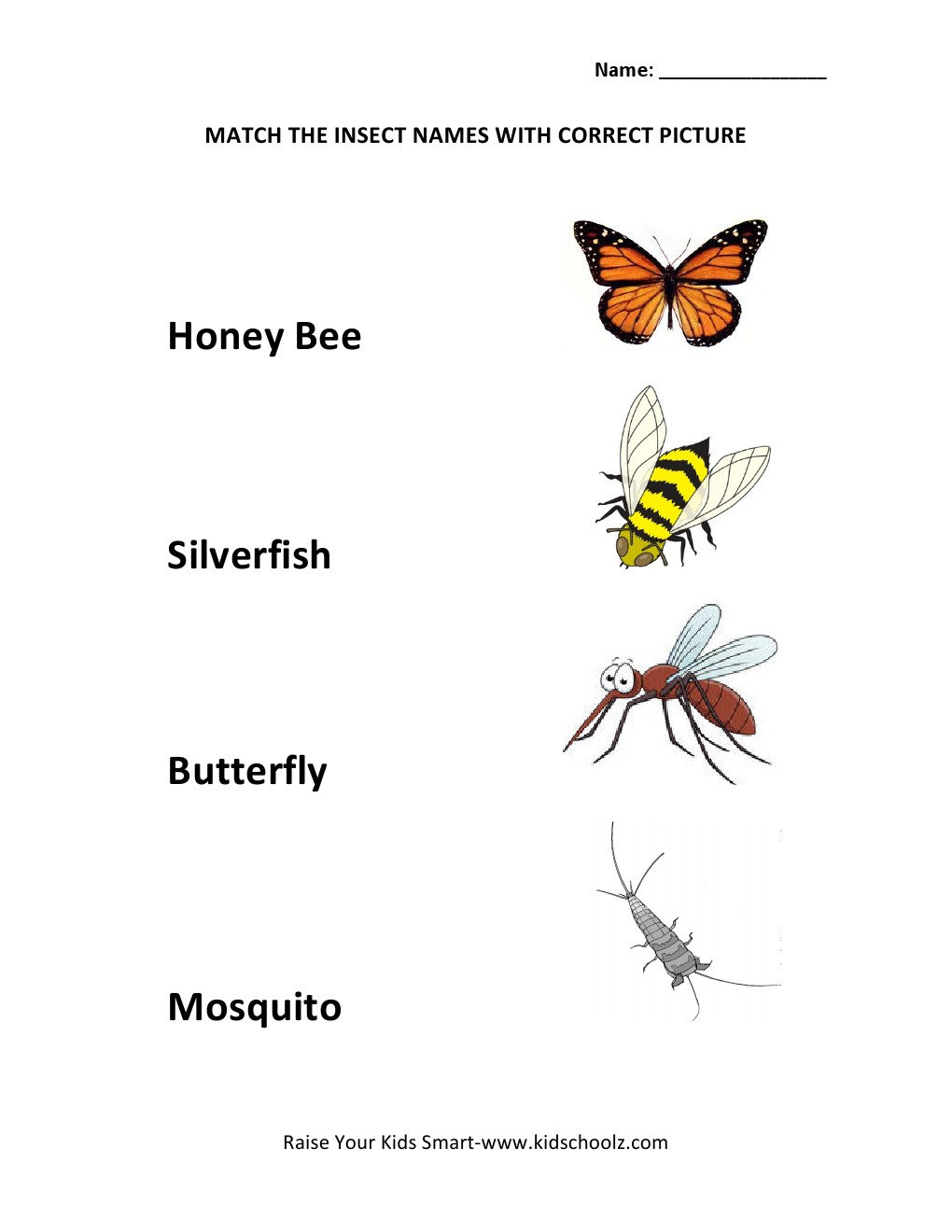 Worksheets Insect Worksheets insect worksheets kindergarten wallpapers background gallery