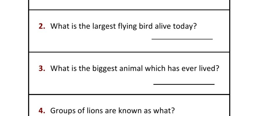 Worksheets For Grade 1 Gk : Grade general knowledge worksheet