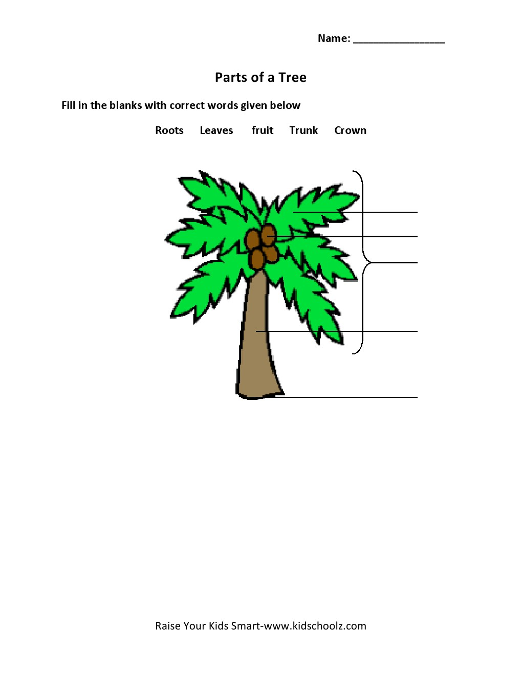 Uncategorized Parts Of A Tree Worksheet grade 2 parts of a tree worksheet 5 kidschoolz worksheet