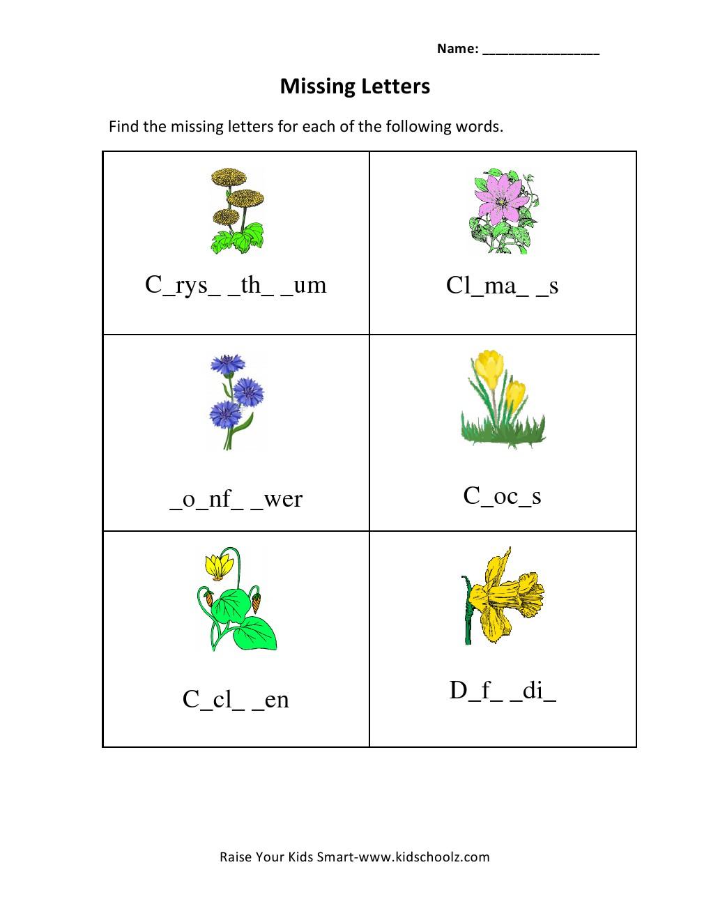 Grade 3 Missing Letters Worksheet