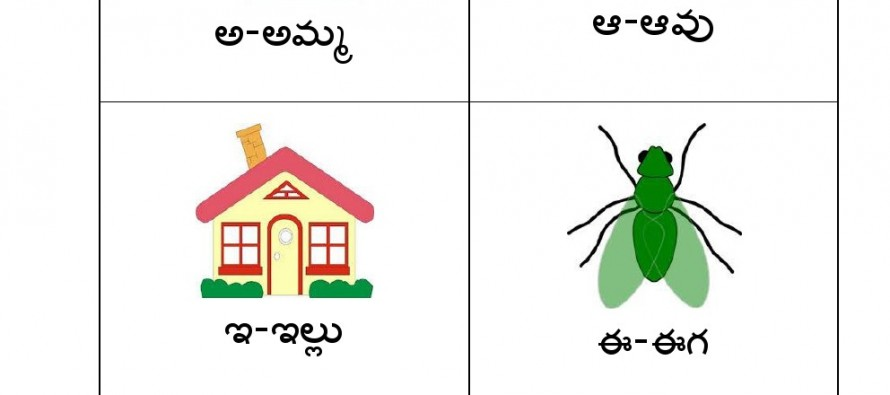 In this worksheet kids can learn about telugu letters and words.