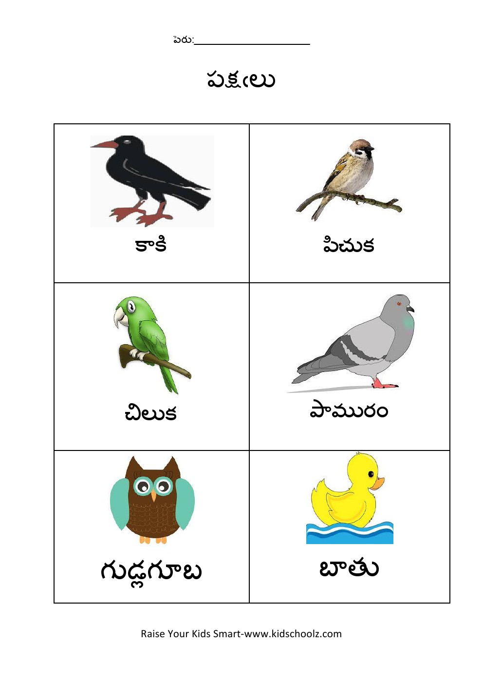 Telugu- Birds Worksheet 1 -
